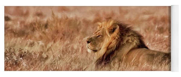 Black-maned Lion Of The Kalahari Waiting Yoga Mat