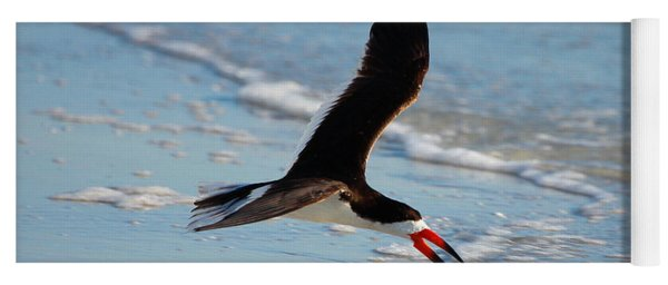 Black Skimmer Yoga Mat