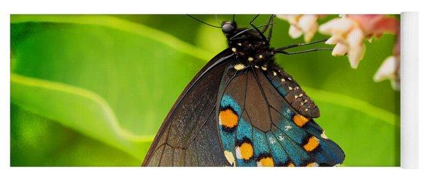Black Swallowtail #1 Yoga Mat