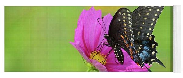 Black Swallowtail On A Cosmos Yoga Mat