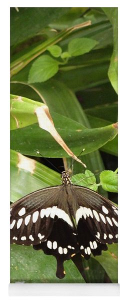 Black White Butterfly Green All Over Yoga Mat