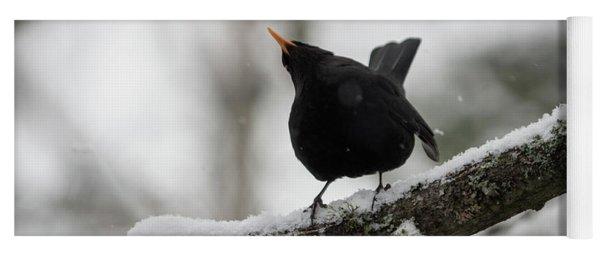 Blackbird _ Shake It Off Yoga Mat