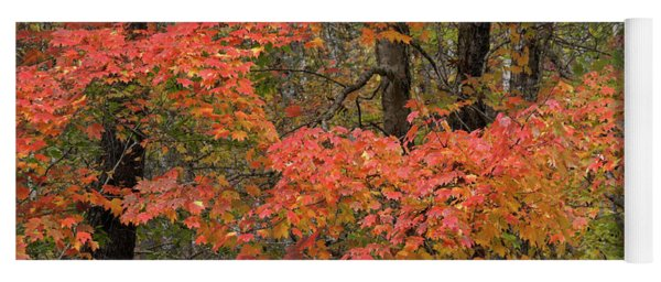 Blaze Of Autumn Yoga Mat