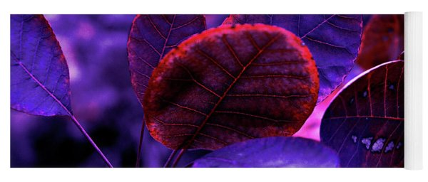 Bleeding Violet Smoke Bush Leaves - Pantone Violet Ec Yoga Mat