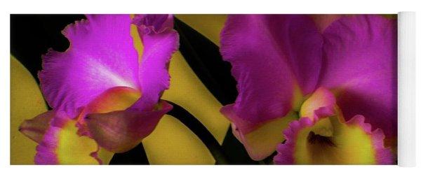 Blooming Cattleya Orchids Yoga Mat