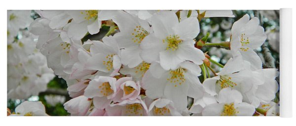 Blooming Cherry Blossoms Yoga Mat