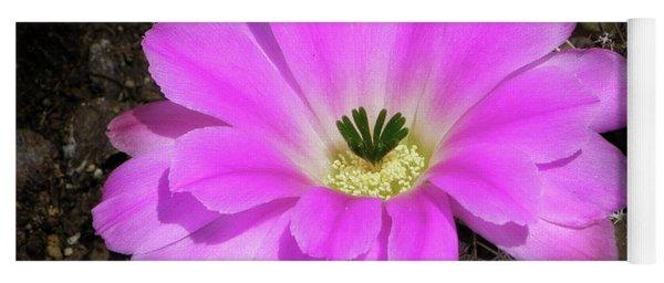 Blooming Pink Yoga Mat