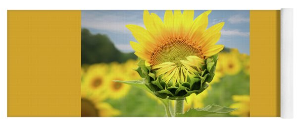 Blooming Sunflower Yoga Mat