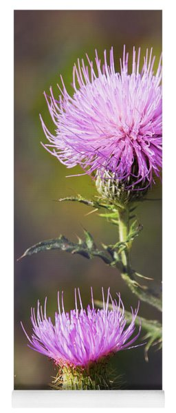 Blooming Thistle Yoga Mat
