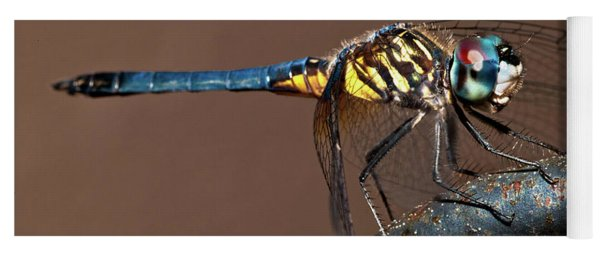 Blue And Gold Dragonfly Yoga Mat