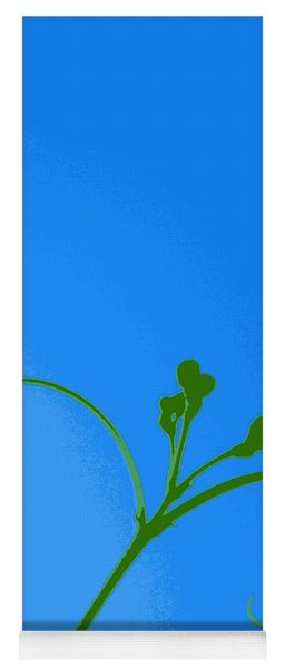 Blue And Green Yoga Mat