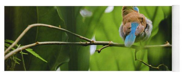 Blue Bird Has An Itch Yoga Mat