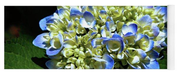 Blue Hydrangea Onstage 2620 H_2 Yoga Mat