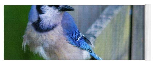 Blue Jay Fluffed Yoga Mat