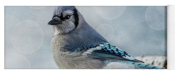 Yoga Mat featuring the photograph Blue Jay Perch by Patti Deters