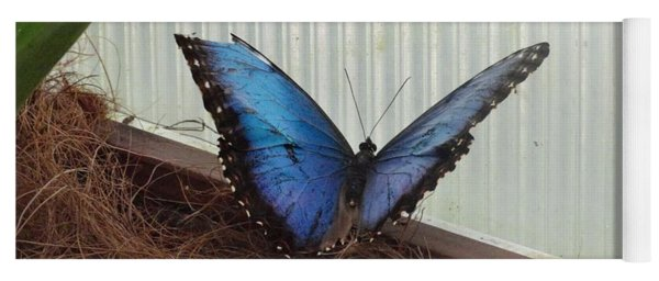Blue Life Butterfly Yoga Mat