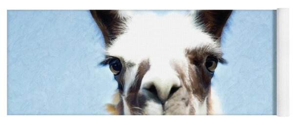 Yoga Mat featuring the photograph Blue Llama by Sue Collura