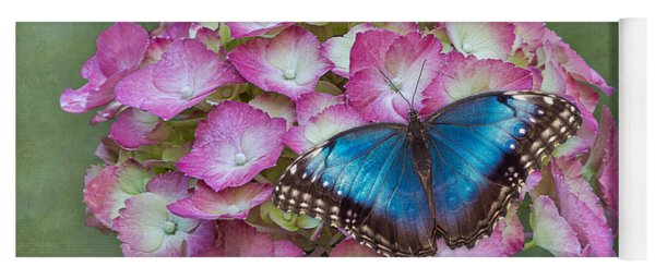 Yoga Mat featuring the photograph Blue Morpho Butterfly On Pink Hydrangea by Patti Deters