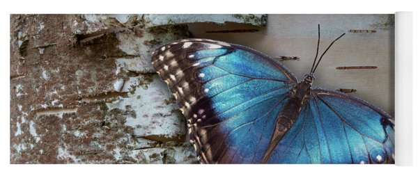 Yoga Mat featuring the photograph Blue Morpho Butterfly On White Birch Bark by Patti Deters