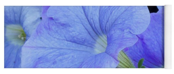 Blue Petunia Blossom Yoga Mat