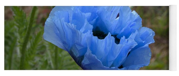 Blue Poppy Yoga Mat