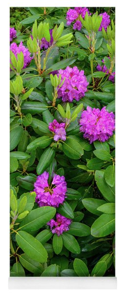 Blue Ridge Mountains Rhododendron Blooming Yoga Mat