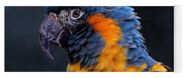 Blue-throated Macaw Profile Yoga Mat