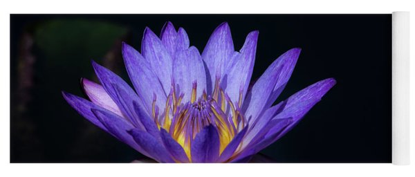 Blue Water Lily Yoga Mat