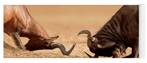 Blue Wildebeest Sparring With Red Hartebeest Yoga Mat