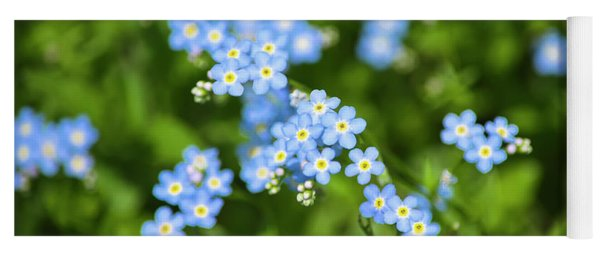 Blue Wildflowers Forget Me Nots Yoga Mat