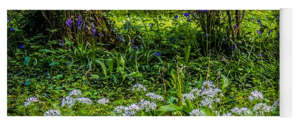 Bluebells And Wild Garlic At Coole Park Yoga Mat