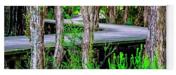 Boardwalk In The Woods Yoga Mat