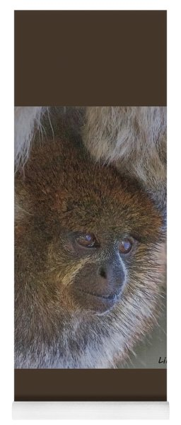 Bolivian Grey Titi Monkey Yoga Mat