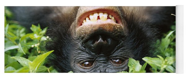 Bonobo Smiling Yoga Mat