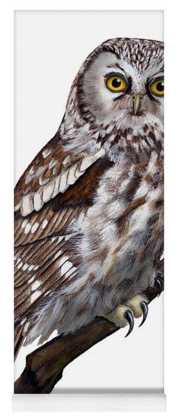 Boreal Owl Tengmalm's Owl Aegolius Funereus - Nyctale De Tengmalm - Paerluggla - Nationalpark Eifel Yoga Mat