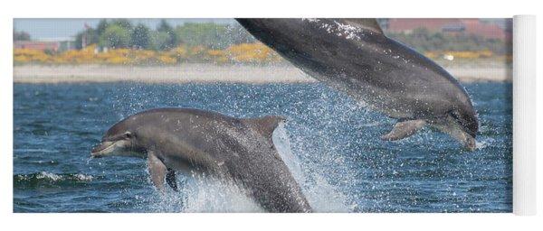 Yoga Mat featuring the photograph Bottlenose Dolphin - Moray Firth Scotland #48 by Karen Van Der Zijden
