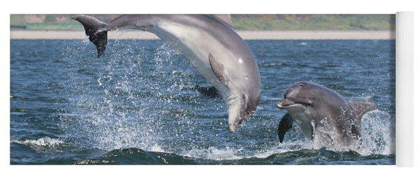 Bottlenose Dolphin - Moray Firth Scotland #49 Yoga Mat