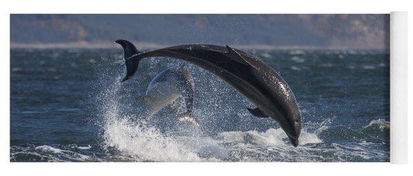 Bottlenose Dolphins - Scotland  #25 Yoga Mat