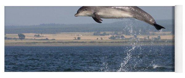 High Jump - Bottlenose Dolphin  - Scotland #42 Yoga Mat