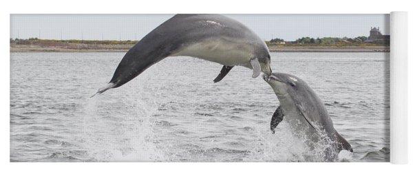 Bottlenose Dolphins - Scotland #1 Yoga Mat