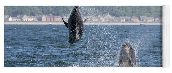 Yoga Mat featuring the photograph Bottlenose Dolphins - Moray Firth Scotland #46 by Karen Van Der Zijden