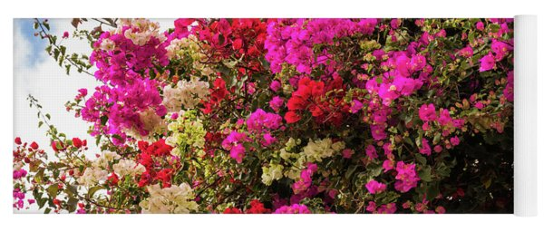 Bougainvillea In Funchal Yoga Mat