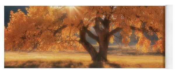 Boxelder's Autumn Tree Yoga Mat