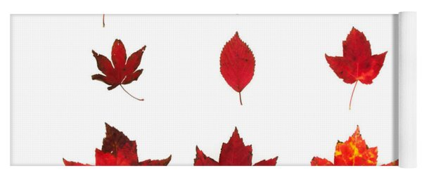 Bright Red Autumn Leaves Yoga Mat