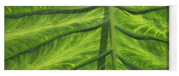 Broad Leaf Tropical Plant Yoga Mat