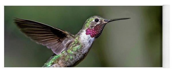 Broad-tailed Hummingbird Male Yoga Mat