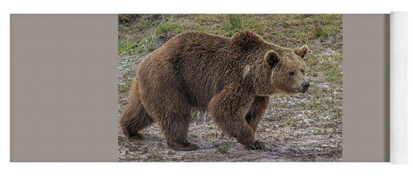 Brown Bear 6 Yoga Mat