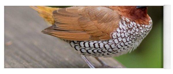 Brown Bird Yoga Mat