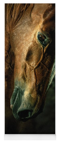 Brown Horse Portrait Yoga Mat