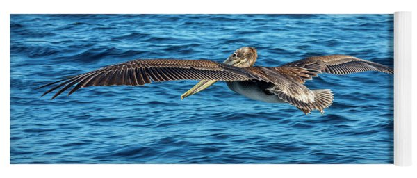Brown Pelican Yoga Mat